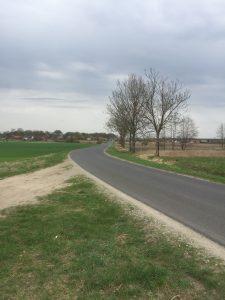Utrzymywanie dróg gminnych